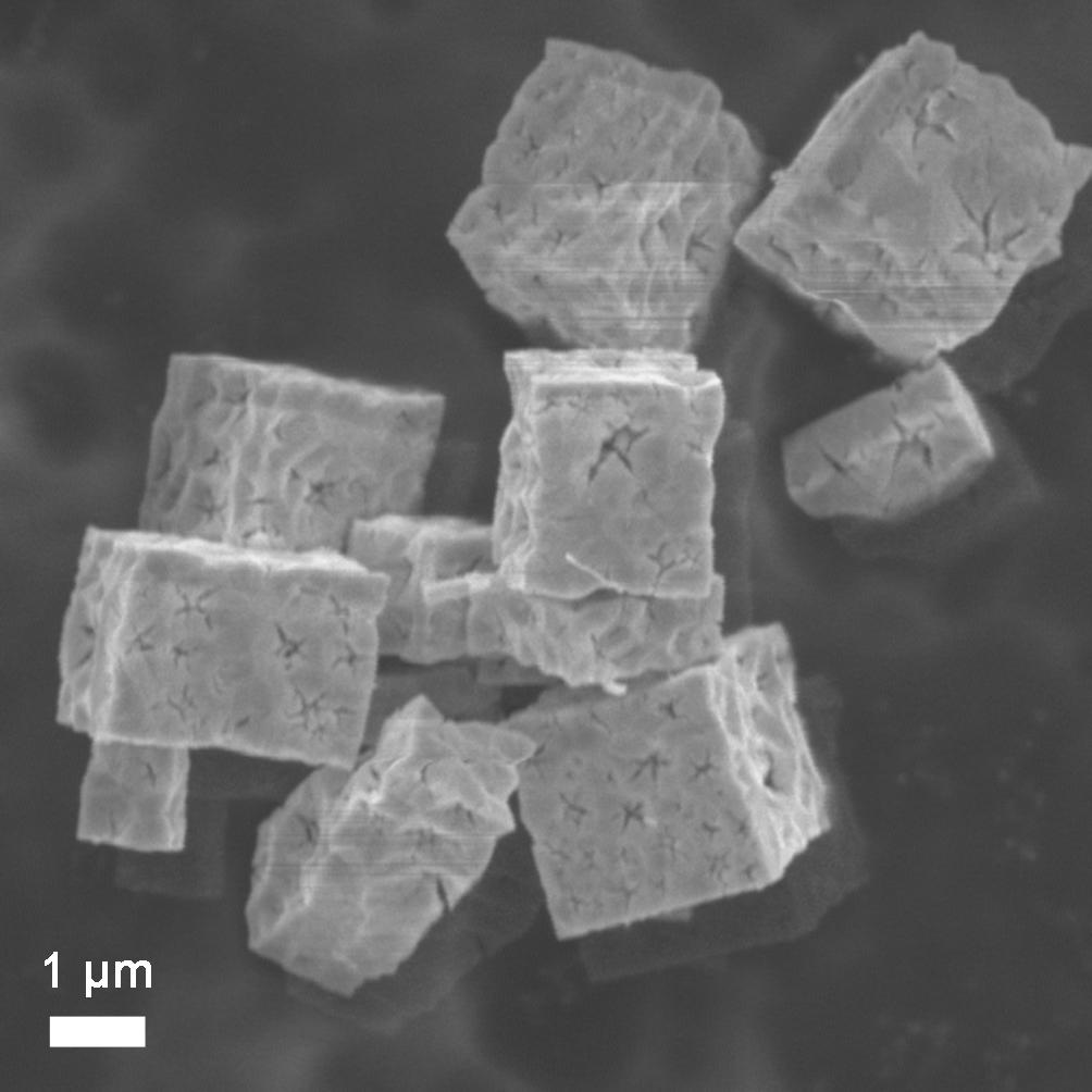 AP0935 SEM image of indium oxide cubes